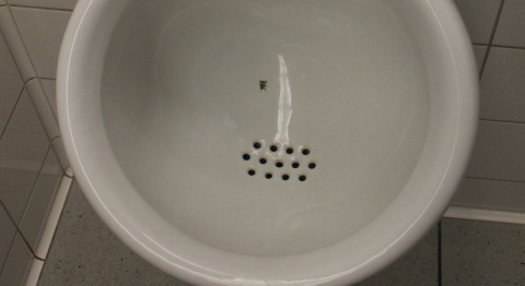 Want Cleaner Bathrooms? Draw a Housefly in the Toilet