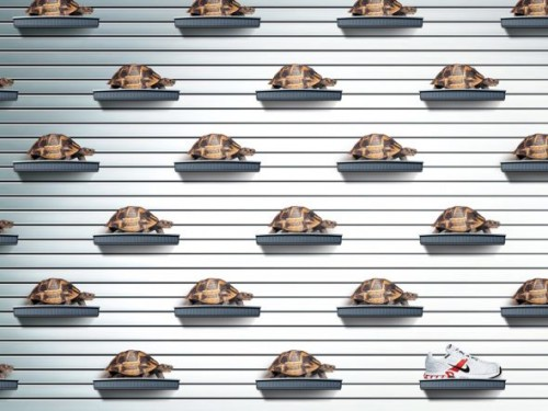Metaphor: Using a completely unrelated thing or idea to explain a concept. In this case, Nike uses turtles to suggest slowness, implying that every other shoe that isn't Nike is slow.